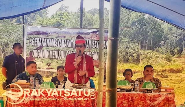 Kelompok Tani Tarongko Jadi Percontohan Sayur Organik yang Siap Tembus Supermarket