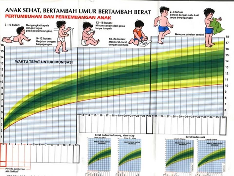 Pertambahan Berat Badan yang Normal Bagi Ibu Hamil