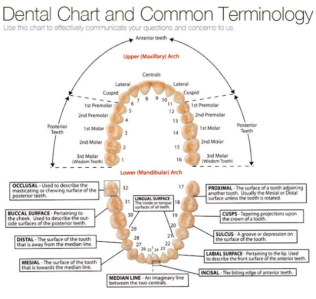 dental interview questions and answers