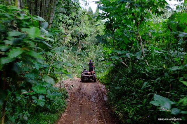 harga paket wisata jeep di kebun teh nglinggo