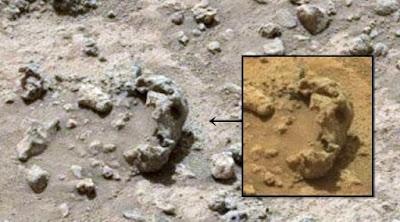 Mars skull, anomaly skulls on Mars life on Mars