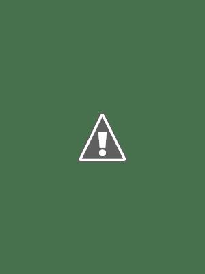 Thiếu Lâm Nội Gia Quyền Việt Nam