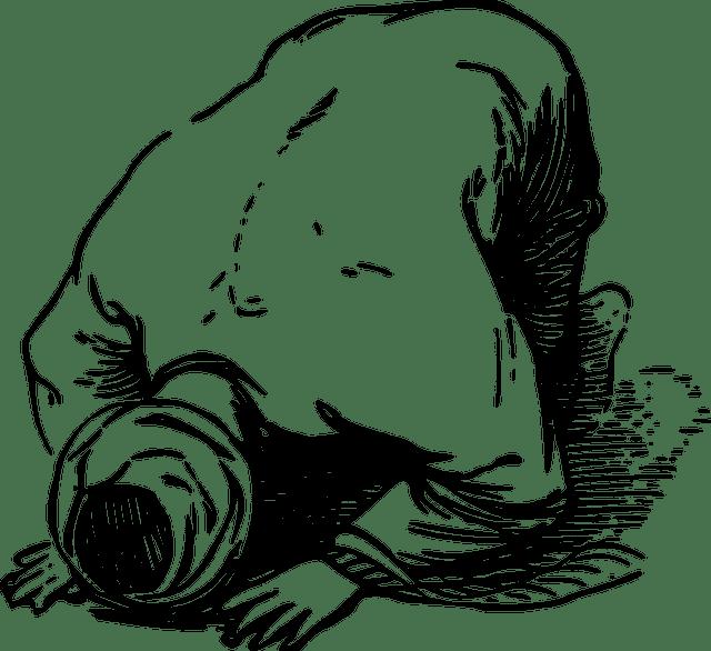Günah ve İnsan (günah nedir?)