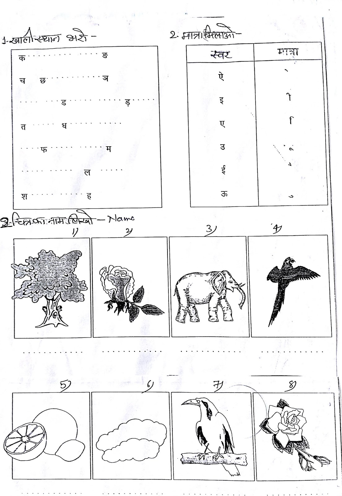 Hindi Grammar Work Sheet Collection For Classes 5 6 7 Amp 8 Alphabets In Hindi