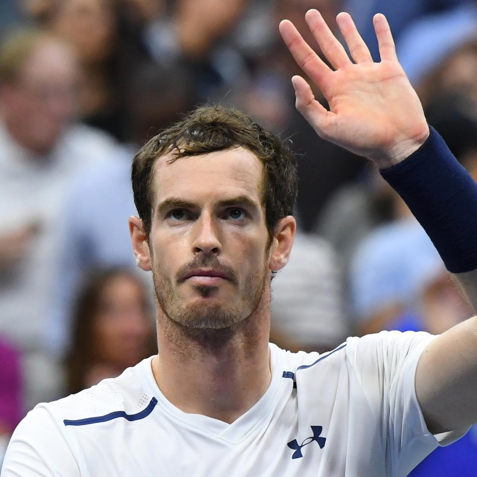 ANDY MURRAY 6