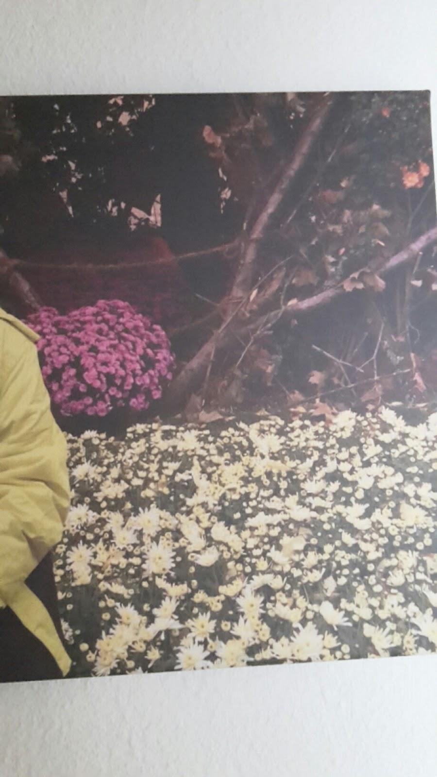 lahr2006 testet ihr foto auf leinwand jetzt online selbst gestalten gestalten sie ihr eigenes. Black Bedroom Furniture Sets. Home Design Ideas