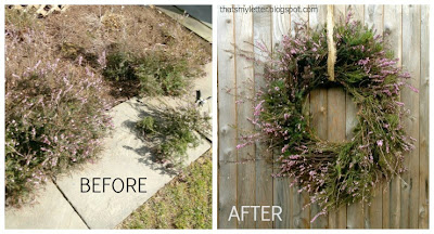purple heather before and after