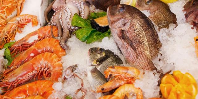 Lanzan campaña de alimentos marinos para las escuelas en Osorno