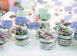 vasetti di vetro per bomboniere matrimonio con piante grasse