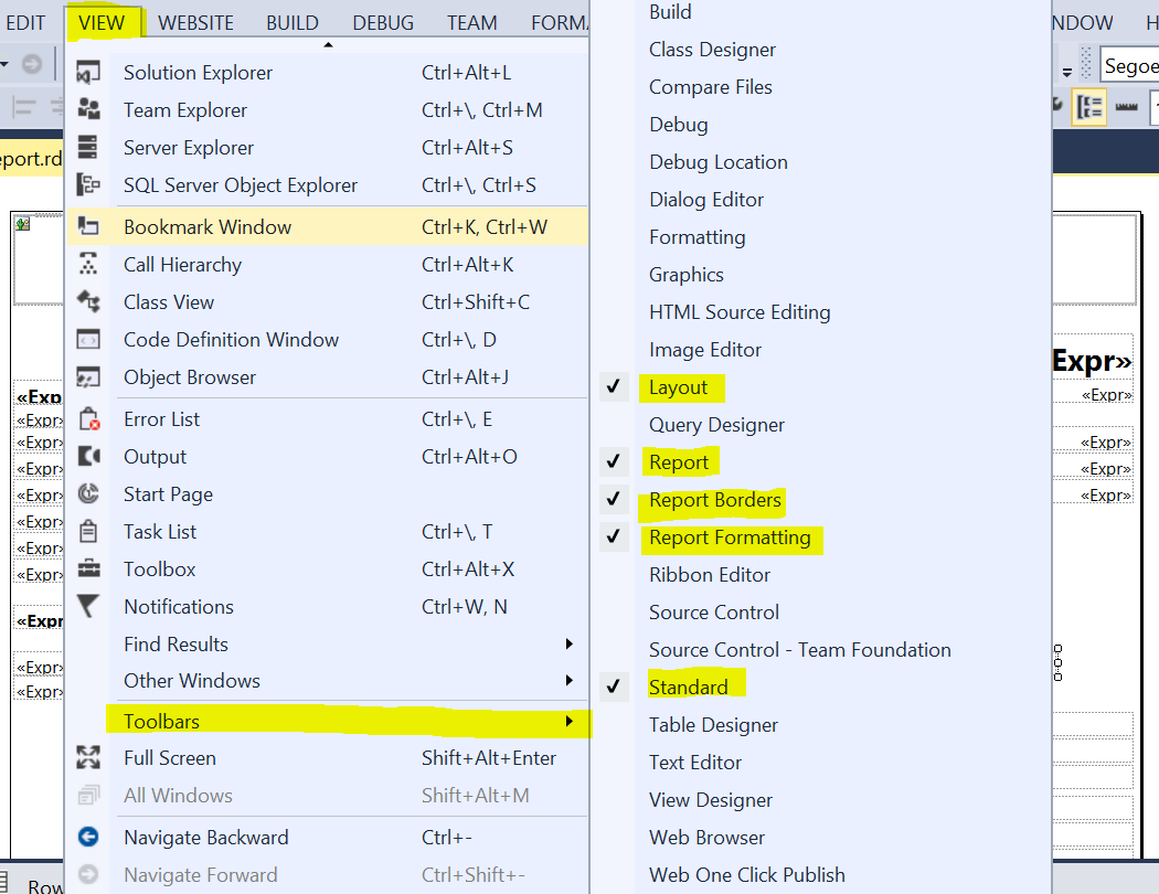 RDLC Report Design Basic Setup in Visual Studio