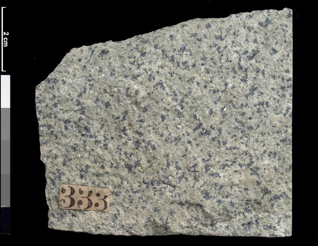 Rock specimen of riebeckite granite. Ailsa Craig, Firth of Clyde, Ayrshire, Scotland.
