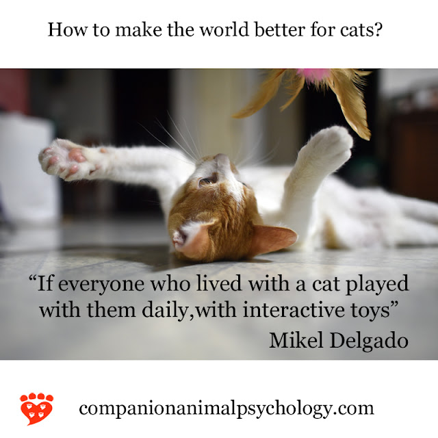 A better world for cats - Mikel Delgado. Part of Companion Animal Psychology News