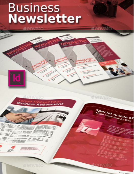 19. Elegant Newsletter