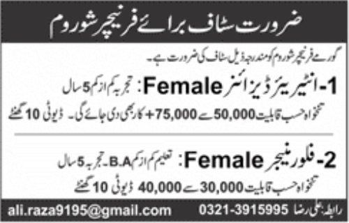 Female Jobs for Interior Designer, Female Manager Jobs In Gourmet Furniture