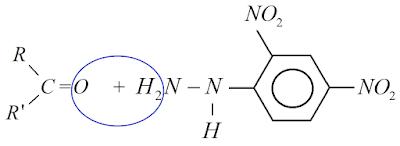 reaçao reagente brady h2o agua