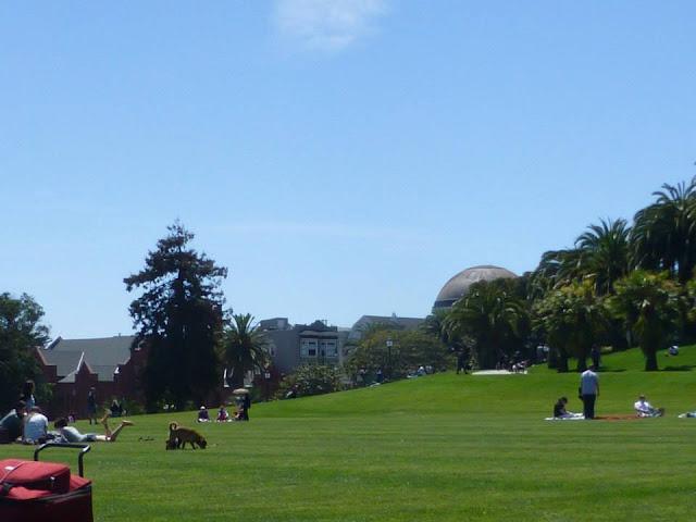 Dolores Park San Francisco