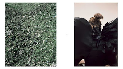 Nick Waplington photos of waste and Alexander McQueen costume