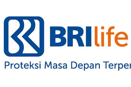 Lowongan Kerja Pekanbaru : BRI Life Juni 2017