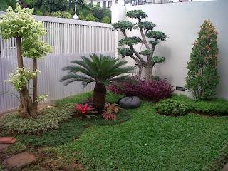 jasa pembuatan taman murah di jakarta selatan