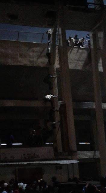 See photos of daredevil Enugu boys climbing poles to avoid N200 gate fee at Phyno's concert