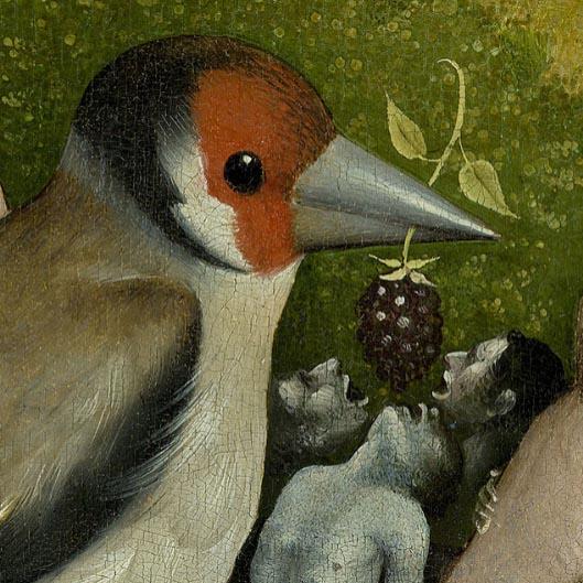 La Galerie De La Marraine Le Journal Des Exposition Oiseaux Et Fruits J R Me Bosch Cali