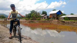 Berwisata sepeda di Kawasan Ekowisata Mangrove Bagek Kembar