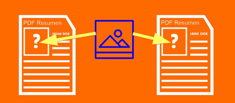 Imagen en el PDF de tu Curriculum.