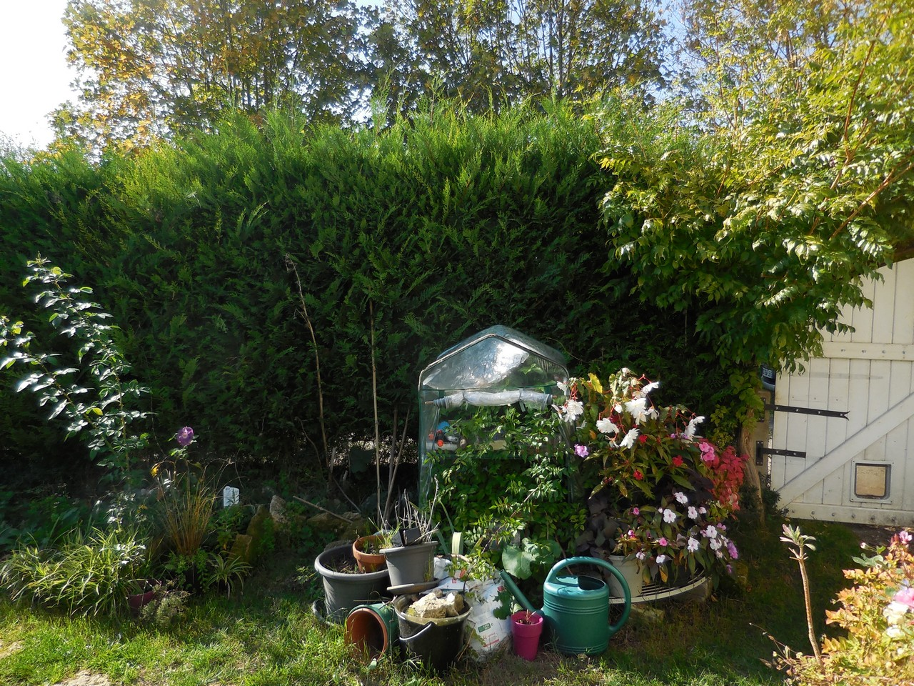 cagouille 39 s garden adieu la petite serre. Black Bedroom Furniture Sets. Home Design Ideas