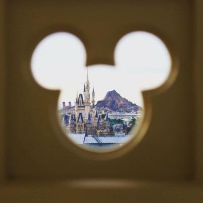 Vue du parc Disney
