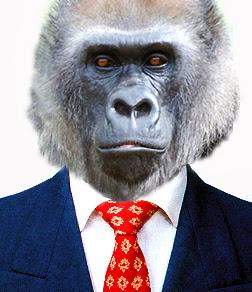 A gorilla wearing a necktie