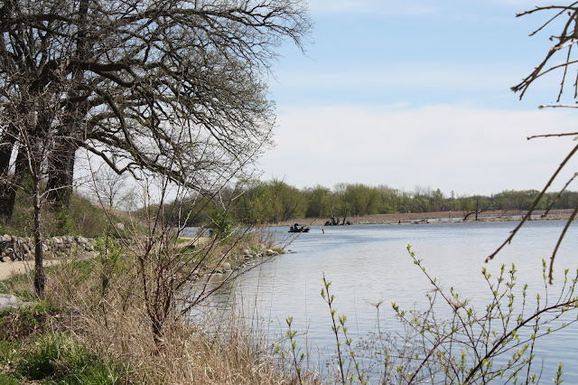 A view of the Fox River in Port Barrington, IL