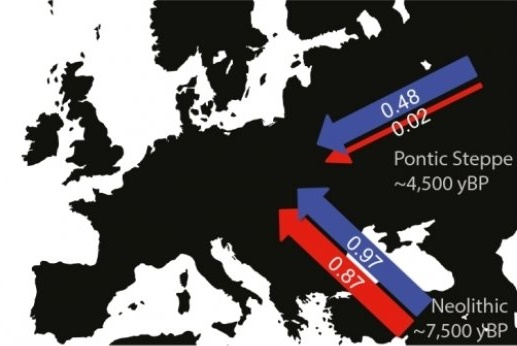 Genetic data show mainly men migrated from the Pontic steppe to Europe 5,000 years ago