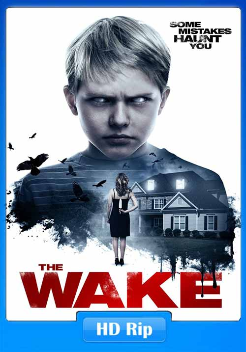 The Wake 2017 480p WEB-DL ESub 250MB x264