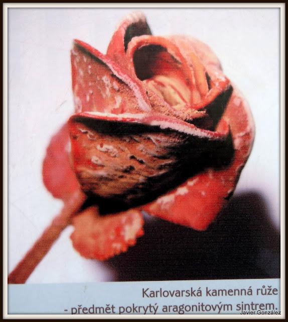 Karlovy Vary. Balneario de la Emperatriz Sisí. Rosa de aragonito