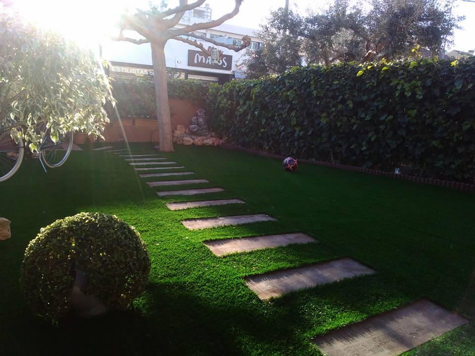 Poda y tala de arboles y palmeras en valencia instalaci n - Cesped artificial valencia ...