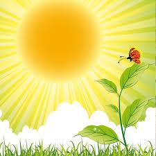Ilustração de uma borboleta vermelha pousada no alto de uma folhagem que desponta da relva bem verdinha. Ao longe, o sol amarelo vibrante lança seus raios sobre nuvens brancas.
