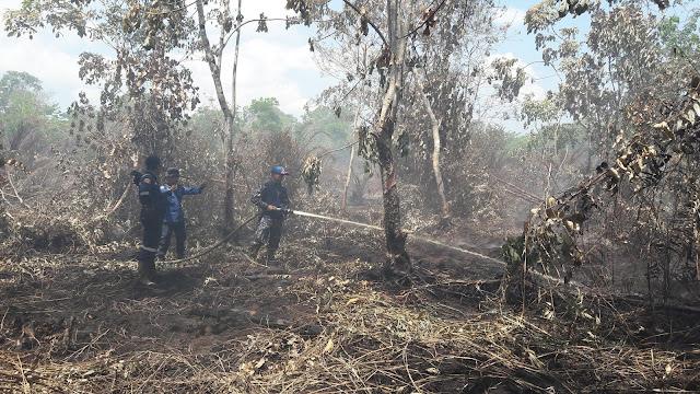 Terpantau Minim Titik Panas, Riau Tetap Siaga Karhutla Memasuki Bulan April