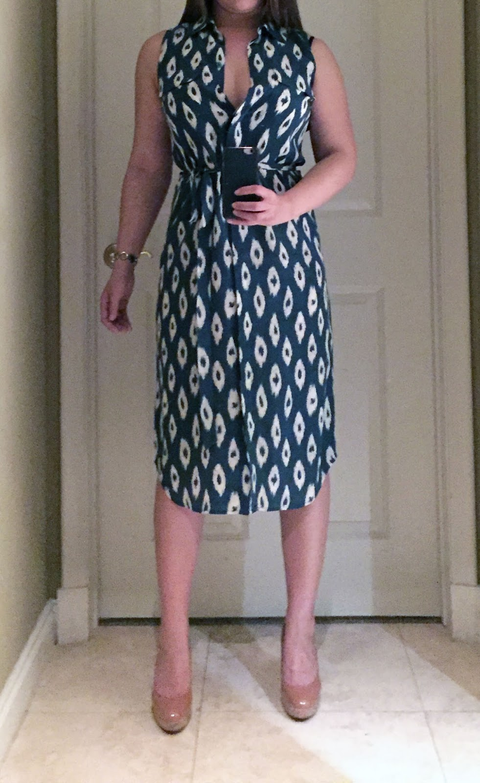 My Superficial Endeavors Equipment Tegan Ikat Print Silk Shirtdress