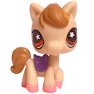 Littlest Pet Shop Gift Set Horse (#587) Pet