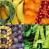 Dieta do Tipo Sanguíneo – Sangue tipo A, B, O é AB