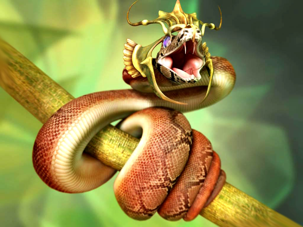 have fun  most dangerous snakes