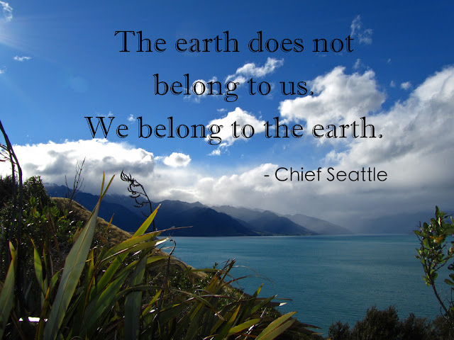 22+ Inspirational Quotes To Celebrate Earth Day | Earth Day Quotes