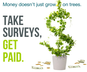Got a Opinion?  Get Paid for It at Survey Junkie  via  www.productreviewmom.com