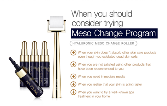 Maxclinic Meso Change Program