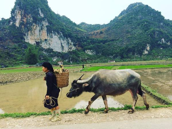 Been there, done that? Now travel Vietnam like a pro off the tourist trail