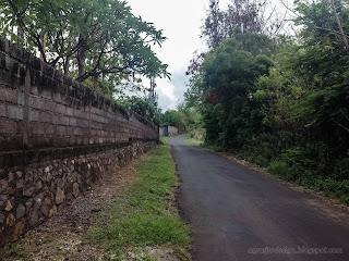 Natural Road Of The Village At Umeanyar, Buleleng Regency, North Bali, Indonesia