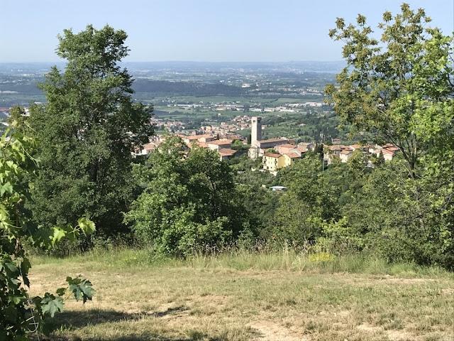 Passeggiata panoramica tra vigneti, ulivi e ciliegi da Gargagnago verso San Giorgio di Valpolicella e visita alla Pieve Romanica