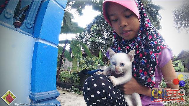 Inaz dan anak kucing