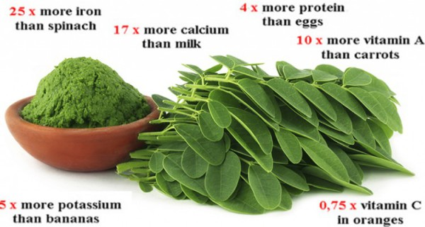 Breaking Study:This Green Herb Cure Different Types Of Cancer, Ovarian,Liver ,Lung and Melanoma!