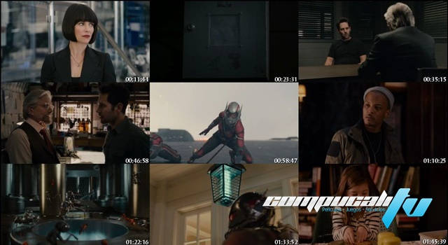 Ant-Man: El Hombre Hormiga (2015) DVDRip Latino